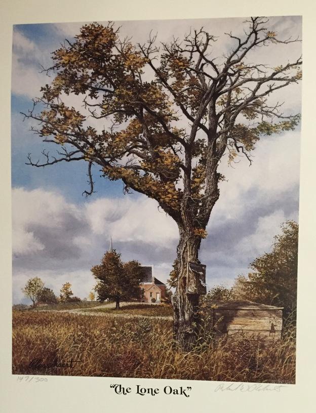 001b-The Lone Oak
