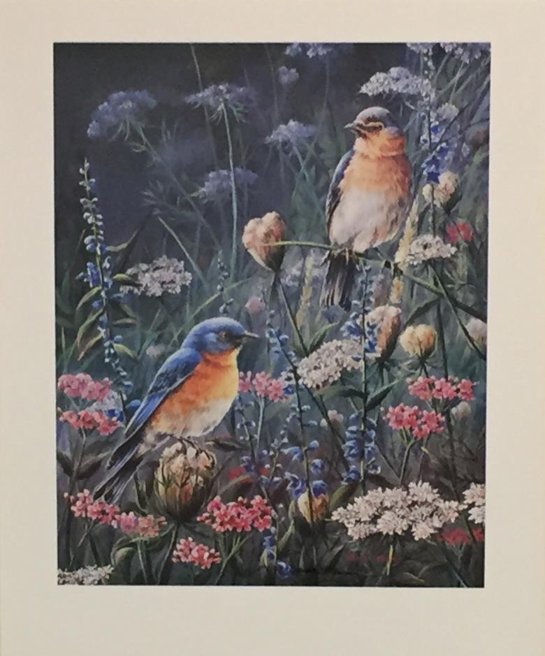 003-Blue Birds in Wildflowers