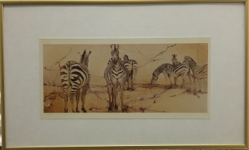 Buchfink - Zebras - Photo Print