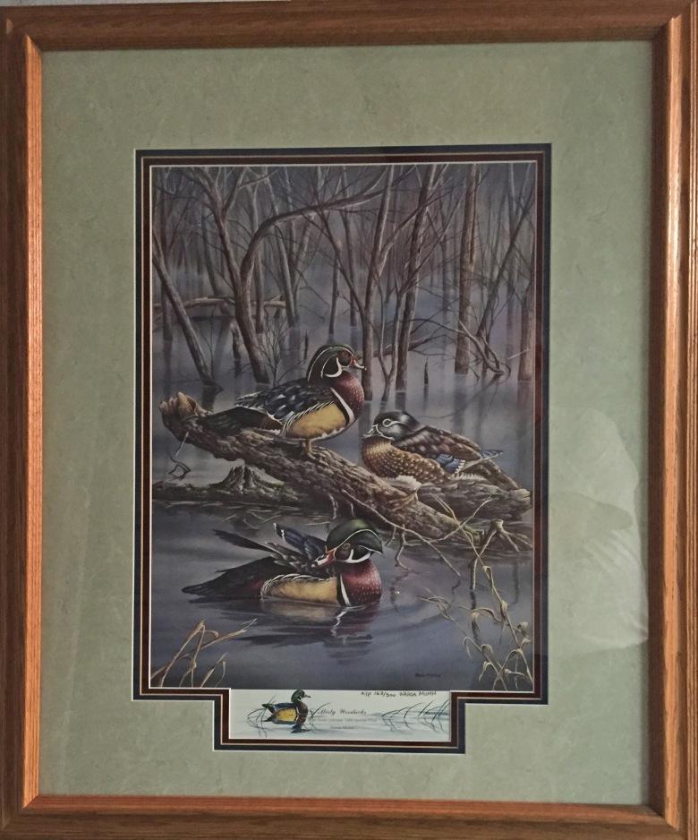 Mumm - Misty Wood Ducks framed