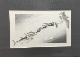Silverman-02 Progressions II_fixed
